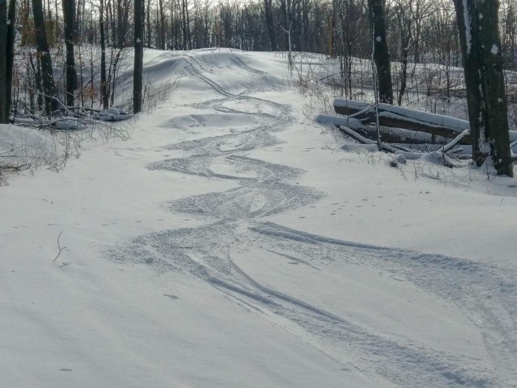 quelques traces dans la neige fraiche de l'ontario
