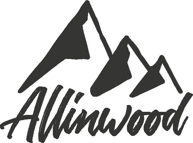 marques de skis indépendants
